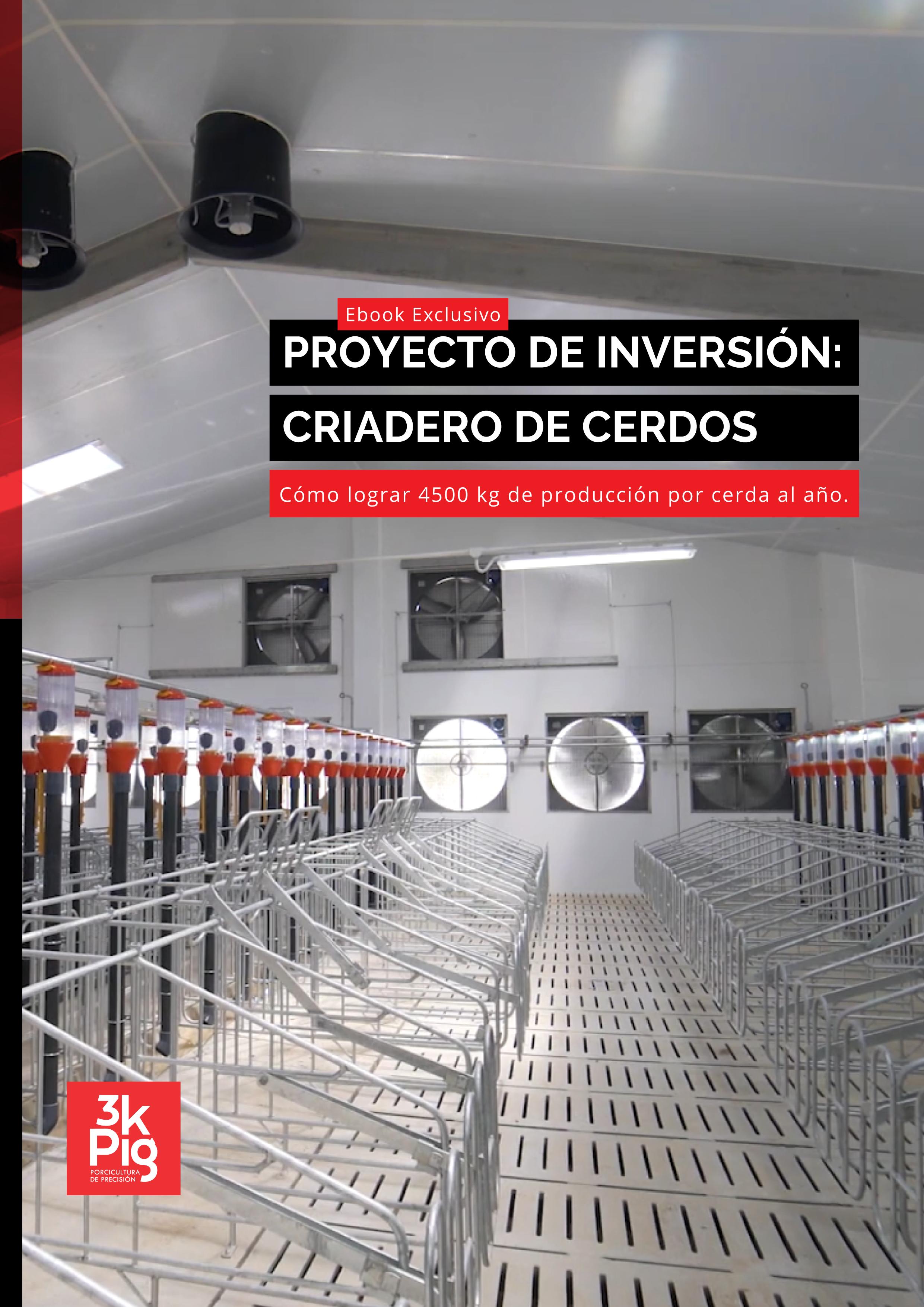 e-book-proyectos-de-inversion